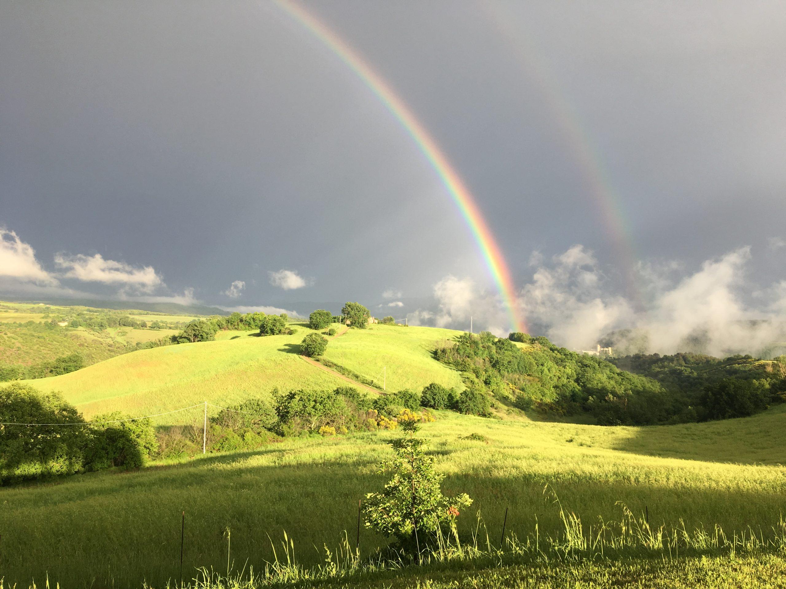 Safari in Umbria - Marco Priori Natural Survival (1)