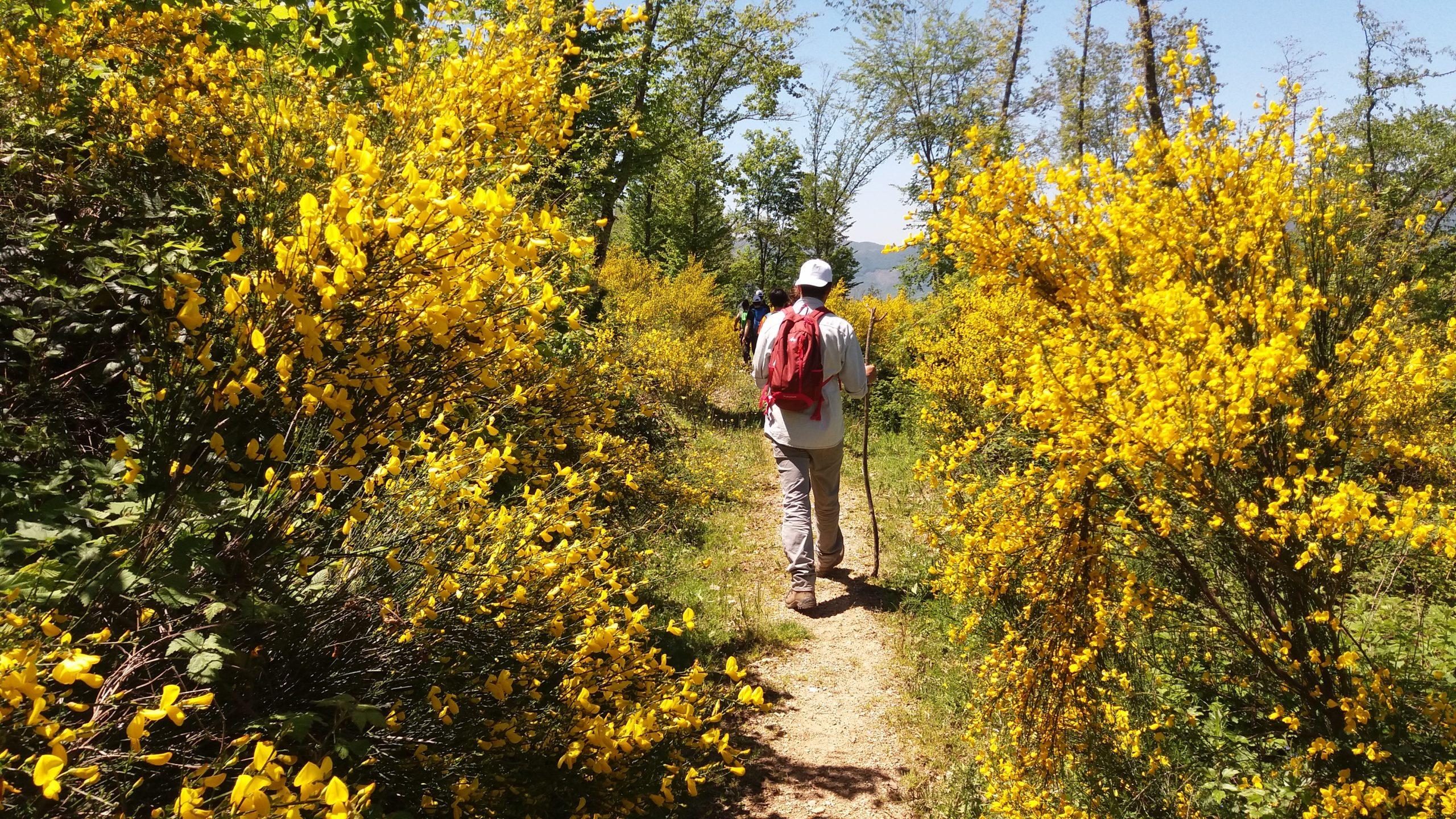 Safari in Umbria - Marco Priori Natural Survival (7)